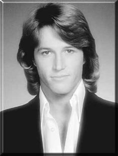 Once upon a time, and many moons ago, I was in love w/this heart throb.  Andy Gibb -
