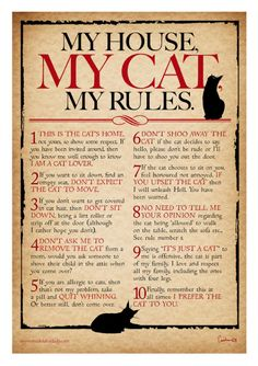 Yup. Don't even think about messing with us people and our cats or you're going to get it. You've been warned.