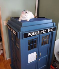 DIY kitty TARDIS playhouse For Cats who love The Doctor...my kitty definitely needs one.:)