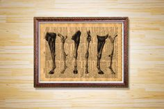 Horse legs print Anatomy poster Medical by CrowDictionaryPrints