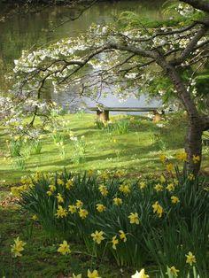 Garden Shed .Garden Shed Amazing Gardens, Beautiful Gardens, Beautiful Flowers, Beautiful Places, Spring Scenery, Spring Landscape, Dream Garden, Big Garden, Herb Garden