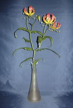 Gloriosa superba (Pompás Koronásliliom, kúszóliliom) - My clay flower https://www.facebook.com/Csodavirag
