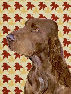 Field Spaniel Fall Leaves Portrait Flag Canvas House Size