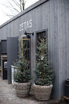 Just nu förbereder vi helgens julmarknad på Zetas. På torget gör vi plats för alla marknadsstånd och har hängt upp grangirlanger och lampslingor.