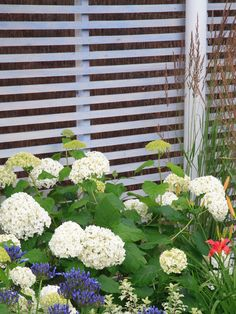Slatted Wood  in Do Fence Me In: Your Guide to Fences, Screens and Gates from HGTV