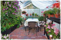 Suvikumpu Patio, Outdoor Decor, Home Decor, Decoration Home, Room Decor, Home Interior Design, Home Decoration, Terrace, Interior Design