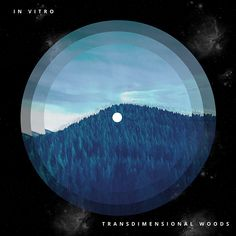 In Vitro - Transdimensional Woods Music Search, The Borrowers, Woods, Archive, Google Translate, Internet, Outdoor, Free, Outdoors