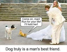 dog animal pulling brides dress run man truly best friend funny pics pictures pic picture image photo images photos lol Funny Cute, Really Funny, The Funny, Funny Animal Pictures, Funny Images, Funny Animals, Mans Best Friend, Best Friends, Funny Friends