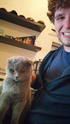 Cats That Don't Like To Take A Selfie (16 Photos) - FunRare Funny Talking Cat Videos, Videos Funny, Cat Videos For Kids, Stupid Human, Cat Sitting, Top Funny, Funny Cat Pictures, Cat Gif, Cat Memes