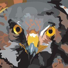 Bird of Prey digital illustration using Adobe Illustrator Birds Of Prey, Material Design, Digital Illustration, Adobe Illustrator, Web Design, My Arts, Branding, Creative, Design Web