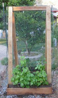 The Thrifty Homesteader: Garden Vertically With a Sandwich Board A-Frame