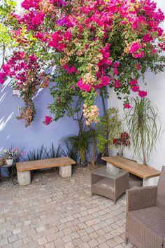 Ideas for paredes patio exteriores Mexican Patio, Mexican Garden, Outdoor Patio Flooring Ideas, Outdoor Decor, Patio Ideas, Plant Decor, Backyard Patio, Indoor Plants, Outdoor Gardens