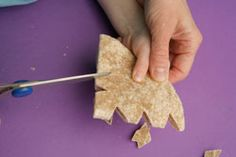 Want a fun winter activity to do with your kids? Cut snowflakes out of tortillas, lightly spray with butter, sprinkle with cinnamon sugar and bake--they turn out pretty and delicious!