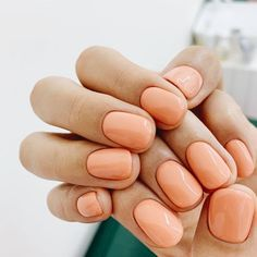 Peach colored manicure inspiration for your next appointment. Peach Nails, Coral Nails, Peach Nail Polish, Cute Nails, Pretty Nails, My Nails, Uñas Color Coral, Minimalist Nails, Garra