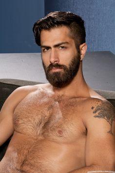 Celebration of the Male Beauty Sexy Bart, Types Of Beards, Hair Tattoos, Bear Men, Hair And Beard Styles, Men's Grooming, Hairy Men, Good Looking Men, Facial Hair