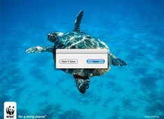 50 Creative WWF Campaigns That Make You Think Twice | The Design Inspiration
