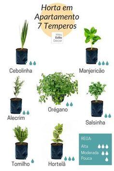 Apartment garden design kitchens ideas for 2019 Home Vegetable Garden, Herb Garden, Garden Plants, Indoor Plants, Home And Garden, House Plants, Indoor Herbs, Garden Roses, Terrarium Cactus