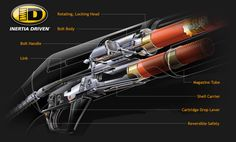 The Benelli Inertia Drive System Exploded Cutaway View
