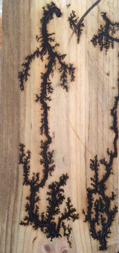 Lichtenberg figure on Oak
