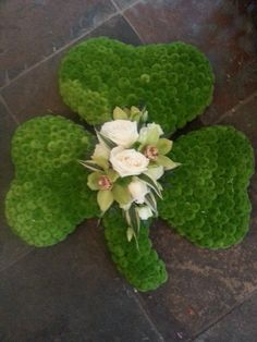 Shamrock By Sarah Kellys Flower Room