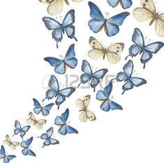 dessin fleurs noir et blanc: Les papillons aquarelle volants-up. Vector illustration Illustration