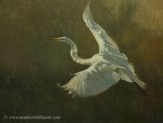 Matthew Hillier - Wildlife & Landscape Artist - Wildlife Gallery. | See more of Matthew's work at: http://www.southstreetartgallery.com/index.html and http://www.matthewhillierart.com
