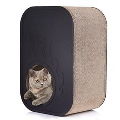 Amazon.com : Pawaboo Cat Scratcher Lounge- Premium Corrugated Cardboard Howllowed Cat Scratching Box Square Cat House with Rounded Corners, BLACK : Pet Supplies