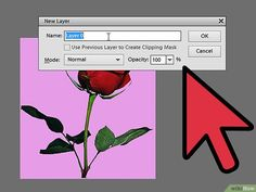 How to Remove Background With Photoshop Elements (with Pictures)