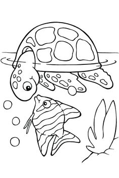 Turtle Coloring Pages for Kids. 20 Turtle Coloring Pages for Kids. Coloring Pages Cute Turtle Coloring Pages for Adults Ocean Coloring Pages, Turtle Coloring Pages, Summer Coloring Pages, Free Adult Coloring Pages, Online Coloring Pages, Cartoon Coloring Pages, Animal Coloring Pages, Coloring Pages To Print, Free Printable Coloring Pages