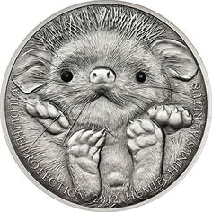 2012 MN mongolia wildlife LONG EARED HEDGEHOG Wildlife Protection Silver Coin 500 Togrog Mongolia 2012 Dollar Perfect Uncirculated