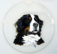 Is Your Bernese Mountain Dog Driving You Crazy Make Massive Change To Your Bernese Mountain Dog S Behaviour In Just 1 Paint Your Pet Bernese Mountain Dog Dogs