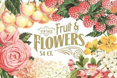 MASSIVE Vintage Fruit and Flowers by Eclectic Anthology on @creativemarket