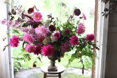 tn - Leading Flowers Magazine, Daily Beautiful flowers for all occasions Silk Floral Arrangements, Vase Arrangements, Beautiful Flower Arrangements, Beautiful Flowers, Cut Flowers, Fresh Flowers, Pink Flowers, Dahlia Bouquet, Dahlia Flower