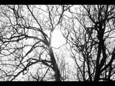 jason mraz - lucky #music #song #jasonmraz
