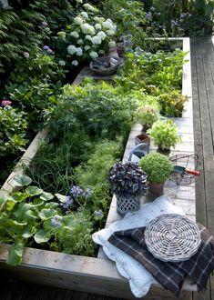 Drømmer du om en smuk køkkenhave i din have eller i den fælles gårdhave, så skal du læse vores gode begynderguide. Small Gardens, Outdoor Gardens, Outdoor Ideas, Outdoor Decor, Outdoor Living, Patio Plants, Yard Design, Growing Vegetables, Garden Tools