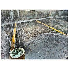 #雷 土砂降り#スコール#heavy#rain#thunder#storm#squall#rainy#season#philippines#フィリピン