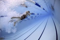 Underwater action shot. https://pixabay.com/en/swimmers-swimming-race-competition-79592/
