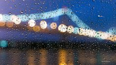 https://flic.kr/p/B5Qu8W | Raining | We all need it for California :) Thanks! During the raining this morning which not a good idea to shoot it with rain instead to see this bridge tower in different perspective. I see there many bridge light reflection of these rain drops on the car window. I was inside my car to shoot it at pier 13 :). The lucky one this time that I like to shoot it in long time but not a chance to see it during the morning twilight time.   #colors #twilight #rain…