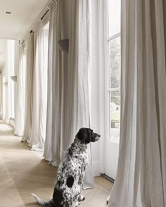 Selecting a curtain style for your new window treatment doesnt have to be confusing. Visit our website where you can plan out the style of curtains for all the rooms in your home or office. You can even order them online too. Pic via Curtains Living, Curtains With Blinds, Grey Linen Curtains, Office Curtains, Ceiling Curtains, Window Curtains, Home And Living, Living Room, Curtain Styles