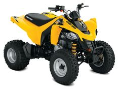 Can-Am DS 250  ATV Copii 2018