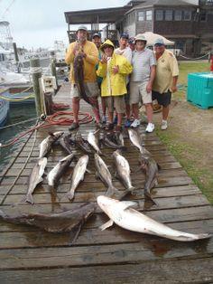 Triggers tilefish etc little clam sportfishing fishing for Cape hatteras fishing report