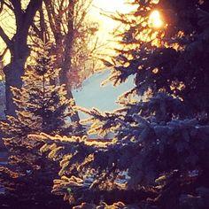 Frosty sunrise #everydayalittlewonder