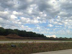 After the rain (by Daya Reyes / Grand Prairie TX, Jun'14).
