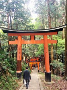 Best hikes Kyoto