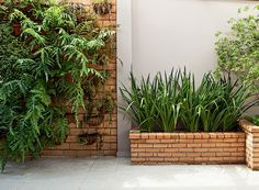 Tijolo aparente: 30 formas de aproveitá-lo na decoração Residential Landscaping, Garden Landscaping, Planter Boxes, Brick Wall, Garden Projects, Decoration, Home And Garden, Backyard, Outdoor Structures