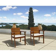 Ericka Patio Dining Chair (Set of 2)