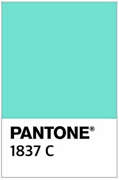 pantone Paint in shade 1837
