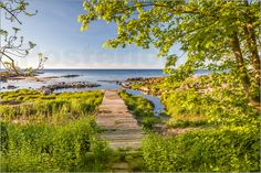 Christian Müringer - Weg zum Meer (Bornholm, Dänemark)