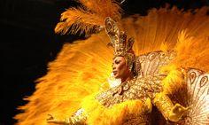 Carnival queen. www.secretearth.com/attractions/1598-rio-carnival