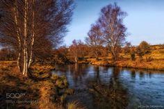 My river by xurxo. @go4fotos